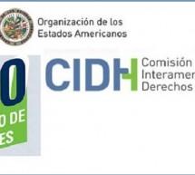 CIDH: Representantes de la organización Ayoreo Totobiegosode OPIT y del Estado Paraguayo se reunieron en Washington