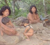 SEAM autorizó desmonte en tierra donde habitan los Totobiegosode