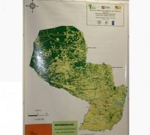 Primer mapa oficial de cobertura forestal en Paraguay