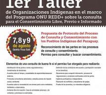 Este jueves se inicia el Primer Taller de Organizaciones Indígenas sobre Consulta para el Consentimiento libre, previo e informado