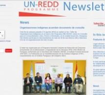 Periódico internacional UN-REDD PROGRAMME Newsletter publica artículo acerca del Primer Taller de Consulta y Consentimiento Libre, Previo e Informado hecho en Paraguay
