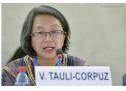 La FAPI manifiesta a relatora de las Naciones Unidas su preocupación por amedrentamiento a defensores indígenas de la comunidad Sauce