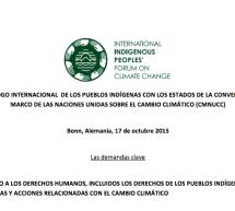 Demandas clave respecto a los derechos de los Pueblos Indígenas en políticas y acciones relacionadas con el cambio climático