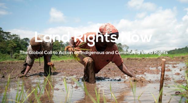 Iniciativa global de acción sobre los Derechos a la Tierra de los Pueblos Indígenas será presentada durante el foro de la ONU