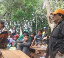 Sigue la lucha de los Ava Guaraní Paranaense – Comunidad Sauce