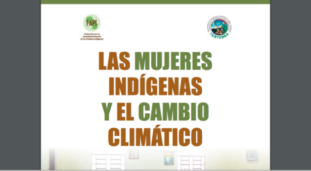 """Para descargar: """"Las mujeres indígenas y el Cambio Climático"""""""