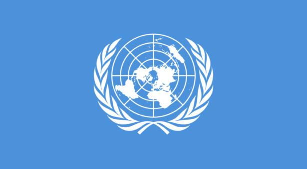 La Oficina del Alto Comisionado de las Naciones Unidas convoca a representantes indígenas a postular para un programa de becas