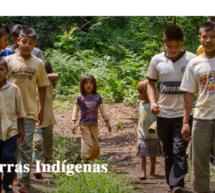 Fue presentada oficialmente plataforma virtual que registra las tierras y territorios de los Pueblos Indígenas del Paraguay