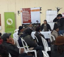 Concepción: Líderes participan de encuentro de socialización del proceso de elaboración del Plan Nacional de Pueblos Indígenas