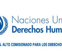 La Oficina del Alto Comisionado de la ONU para los Derechos Humanos convoca a representantes indígenas a postular a un programa de becas