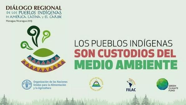 Presidente de la FAPI participa de Diálogo Regional de los Pueblos Indígenas de América Latina y El Caribe