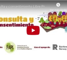 Un vídeo explica en 5 minutos el paso a paso de la Consulta y Consentimiento Libre Previo e Informado con los Pueblos Indígenas