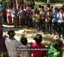 Pueblos Indígenas dan su visión en un vídeo sobre la razón por la que sus territorios y áreas son cunas de la diversidad cultural y biológica