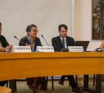 Presidente de la ACIDI en la ONU: «Recomiendo a los Estados de Paraguay, Brasil, Bolivia y Argentina reconocer la existencia de la Nación Guaraní»