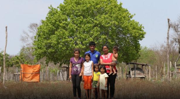 Artículo destaca proyecto de demarcación y saneamiento de territorios de Pueblos Indígenas