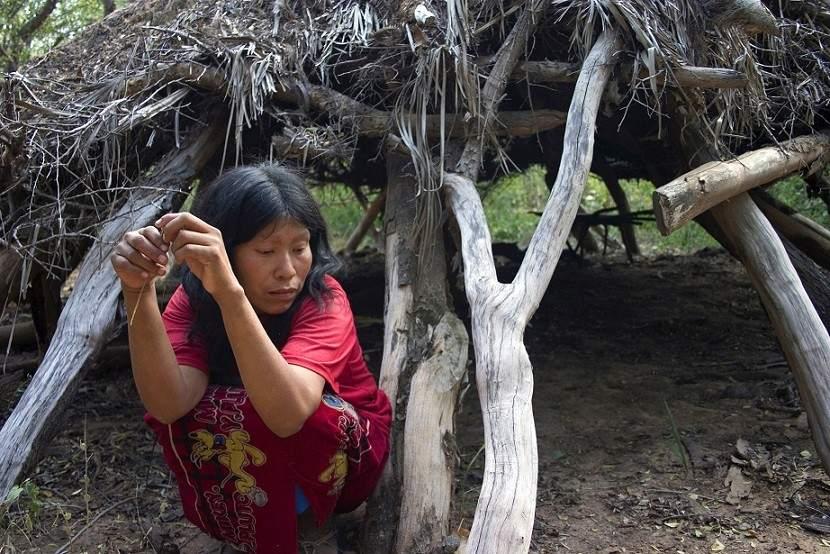 Los Ayoreos habitan en el Chaco Paraguayo, el lugar más deforestado del planeta. Foto: Survival.