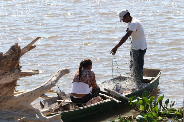 La pesca es una de sus actividades económicas. Cuando empieza la veda y no hay changas, las redes de captura son reemplazadas por machetes: extraen miel en el monte para la venta.